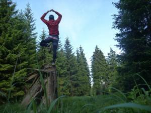Ivo Meier Baum Yoga Vogtland Weg zum Schneehuebel